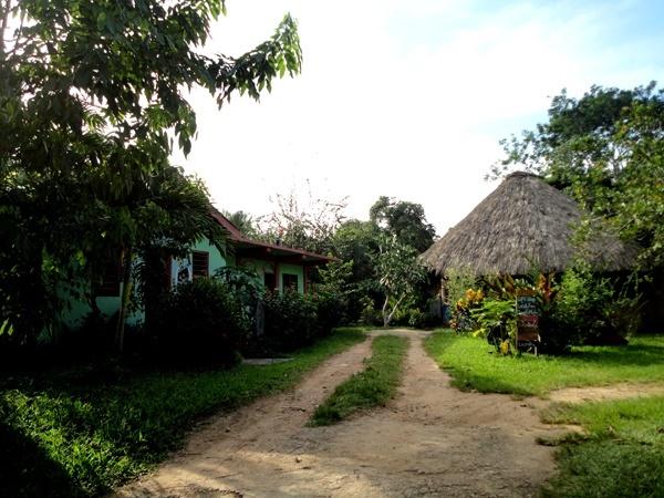 maya-center4