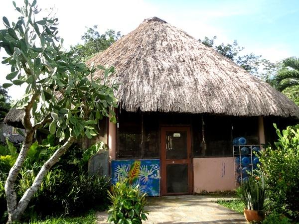 maya-center5